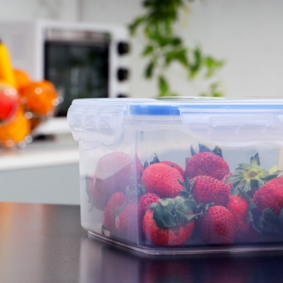 Royalford 350ml Meal Prep Container